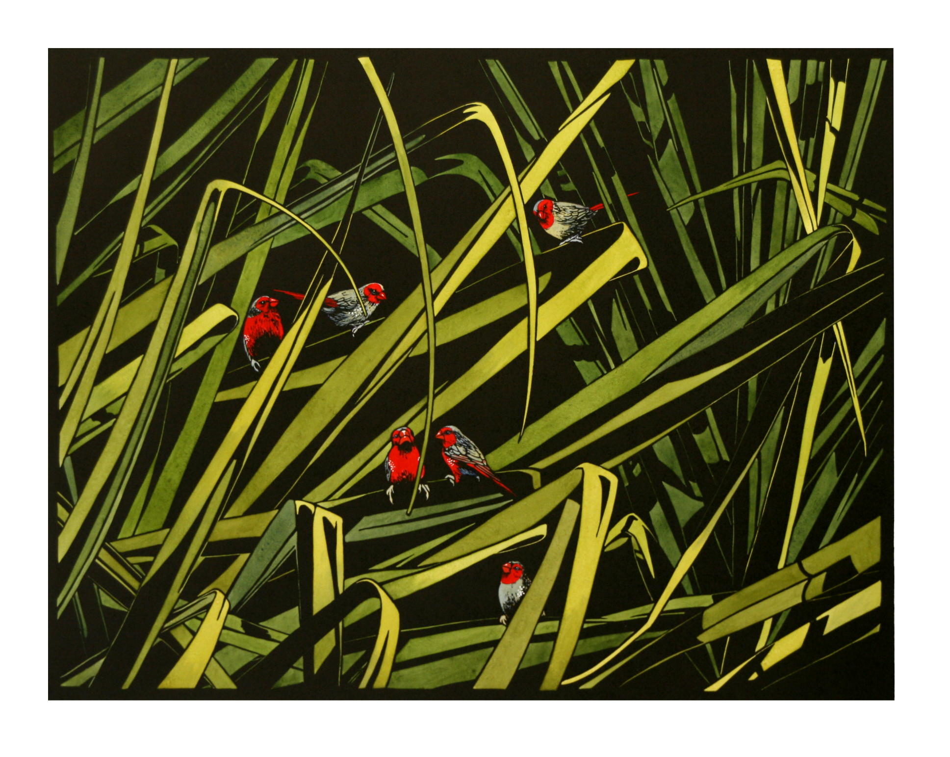 Finches in Pandanus 2